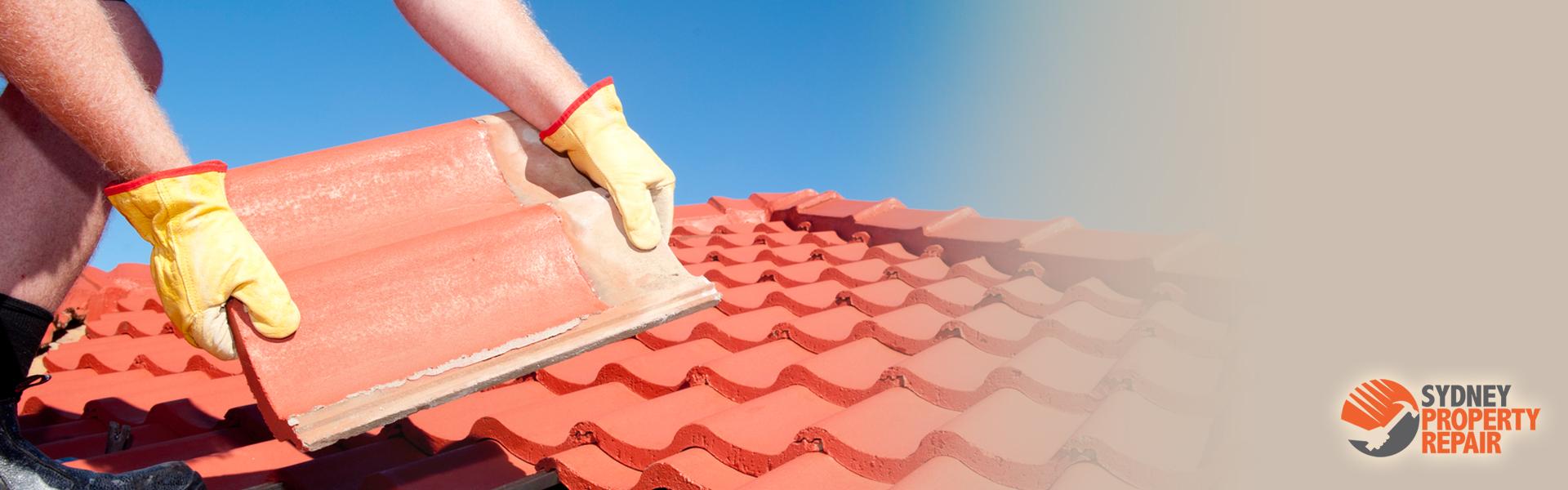 Roof Repairs Sydney Property Repairs